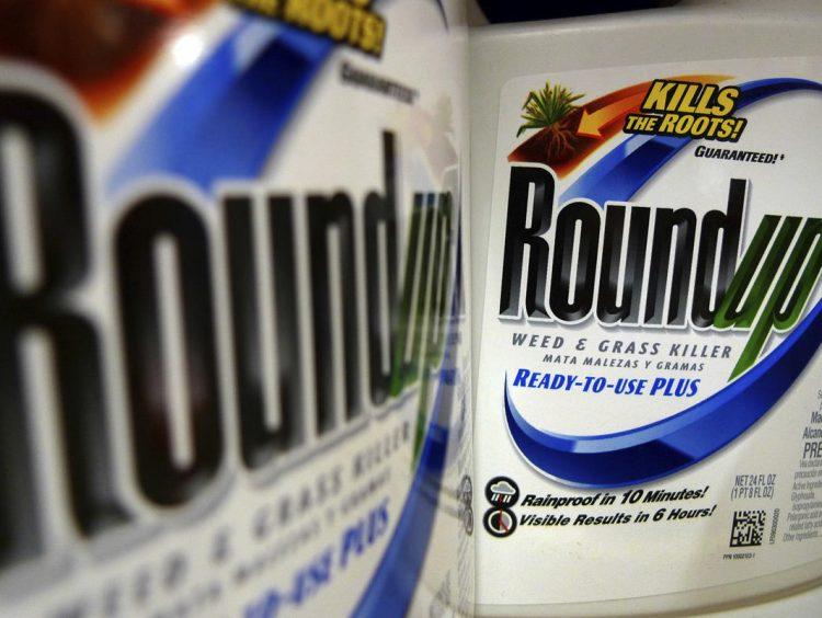 Bayer shares plunge in wake of Monsanto weed killer verdict